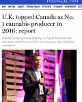 U.K. topped Canada as No. 1 cannabis producer in 2016: report